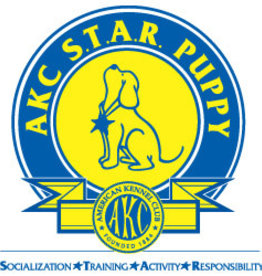 Training - AKC STAR Puppy Program