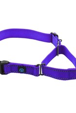 Max & Neo Nylon Martingale- XS Purple