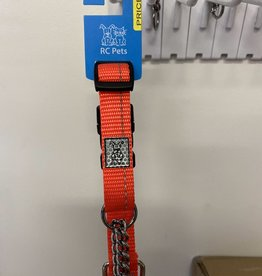 RC Pets RC Pets Canine Equipment Collars  - Small Orange