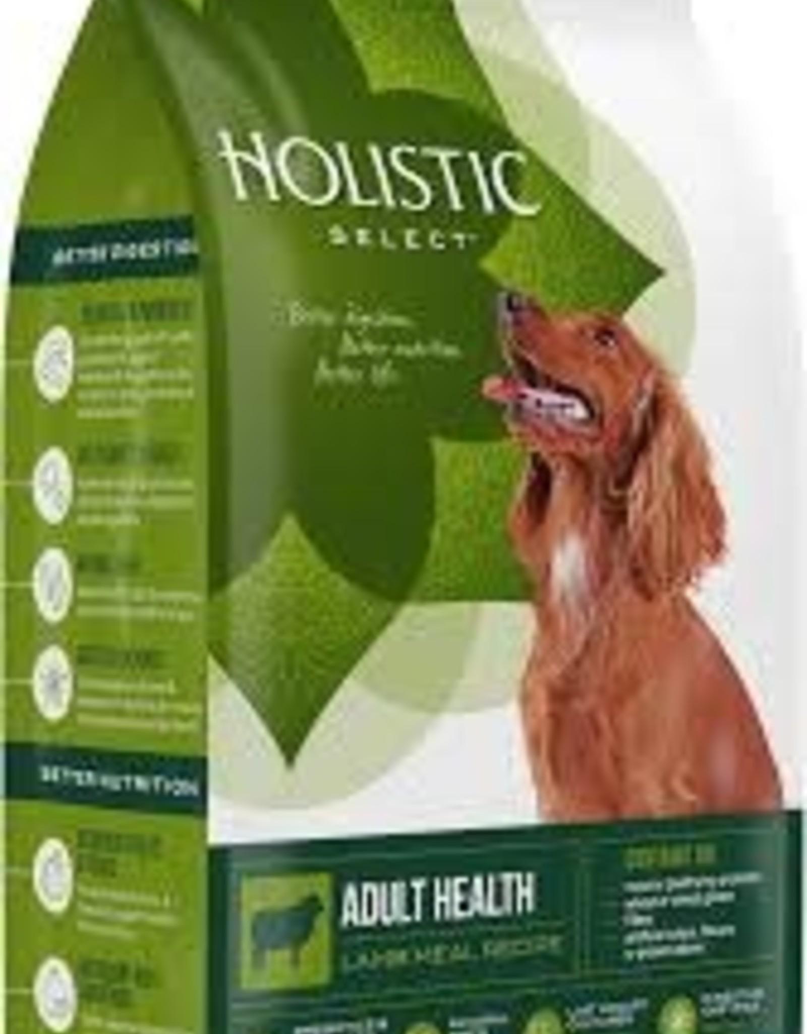 Holistic Select Dog Food 4lb Grain Lamb