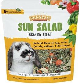 Sunseed Sun Salad Rabbit Foraging Treat