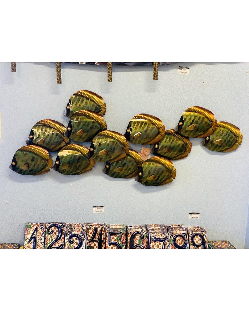 Butterfly Fish School Medium