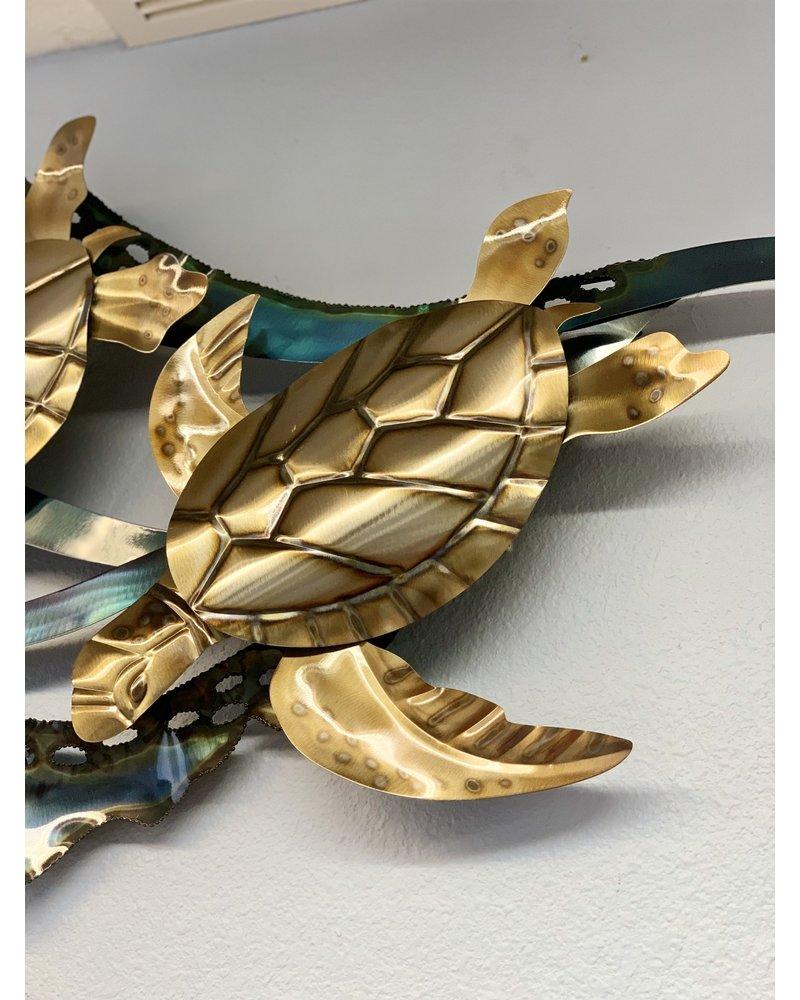 Sea Turtle Kelp