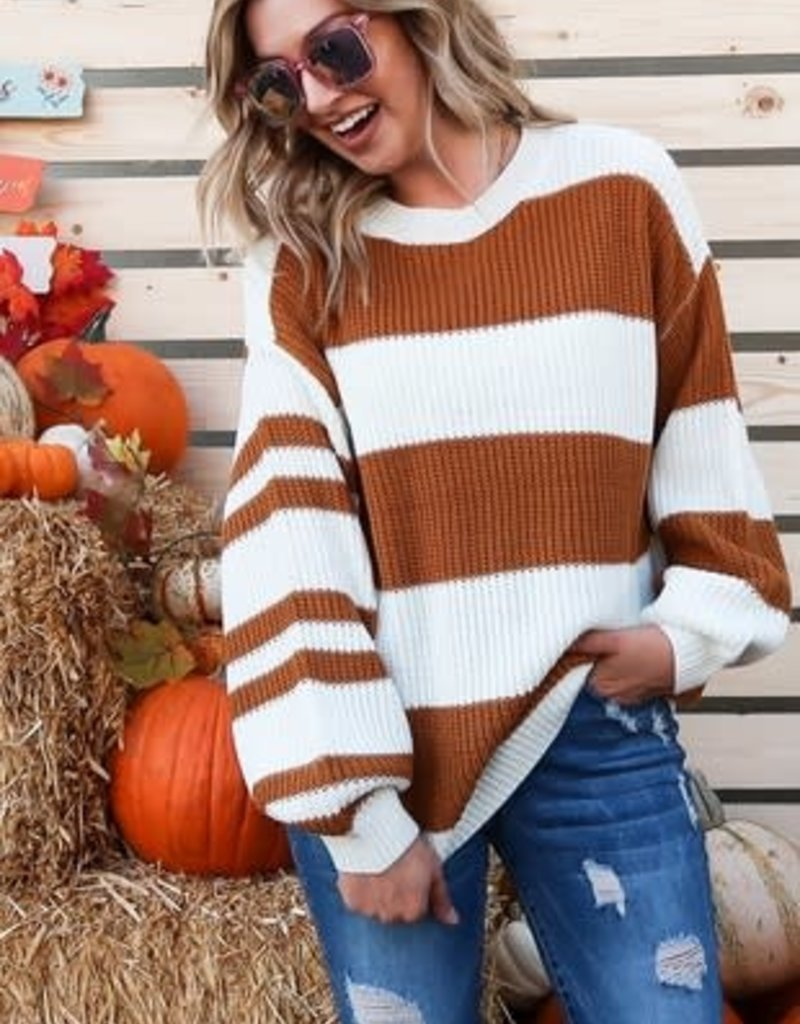 Brown & White Sweater