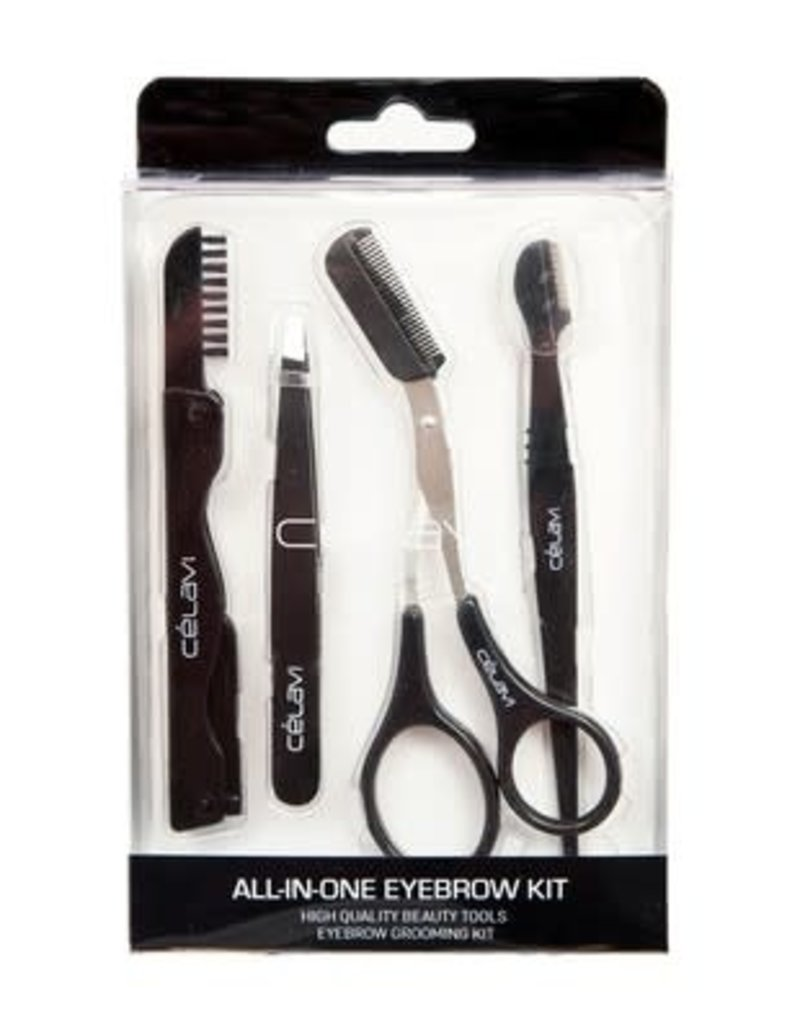 All in One Eyebrow Kit