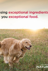DIAMOND PET FOODS DIAMOND NATURALS DOG ADULT CHICKEN & RICE 40#