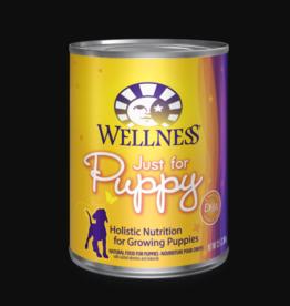 WELLPET LLC WELLNESS PUPPY CAN 12.5OZ