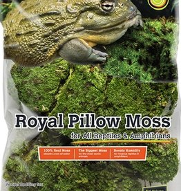 GALAPAGOS GALAPAGOS ROYAL PILLOW MOSS 8QT