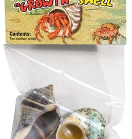 ZOO MED LABS INC ZOOMED HERMIT CRAB SHELL 2 MEDIUM