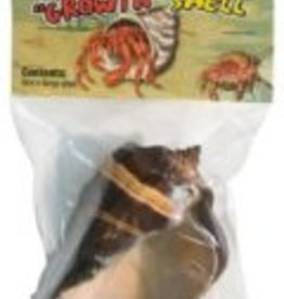 ZOO MED LABS INC ZOOMED HERMIT CRAB SHELL 1 EXTRA LARGE