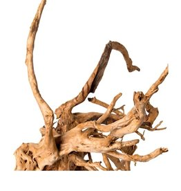 GALAPAGOS SPIDER WOOD ROOT 12-24IN