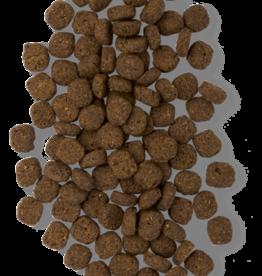 EARTHBORN EARTHBORN DOG UNREFINED ANCIENT GRAINS ROASTED LAMB 4LBS