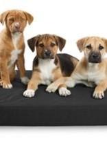 "DOG GONE SMART BED CO. DGS OLIVE NINJA BED 21X30X3"""