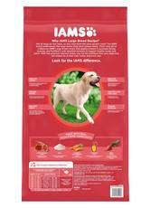 IAMS COMPANY IAMS DOG LARGE BREED ADULT LAMB 15LBS