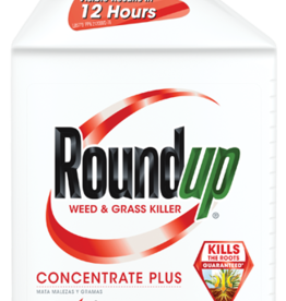 BAYER ROUNDUP 16OZ CONCENTRATE