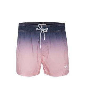 Blend Swim Short