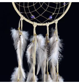 Tan DreamCatcher with Hackle and Pheasant Feathers – Amethyst