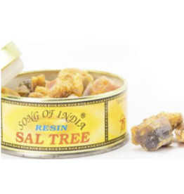 Sal Tree - Natural Resin Incense