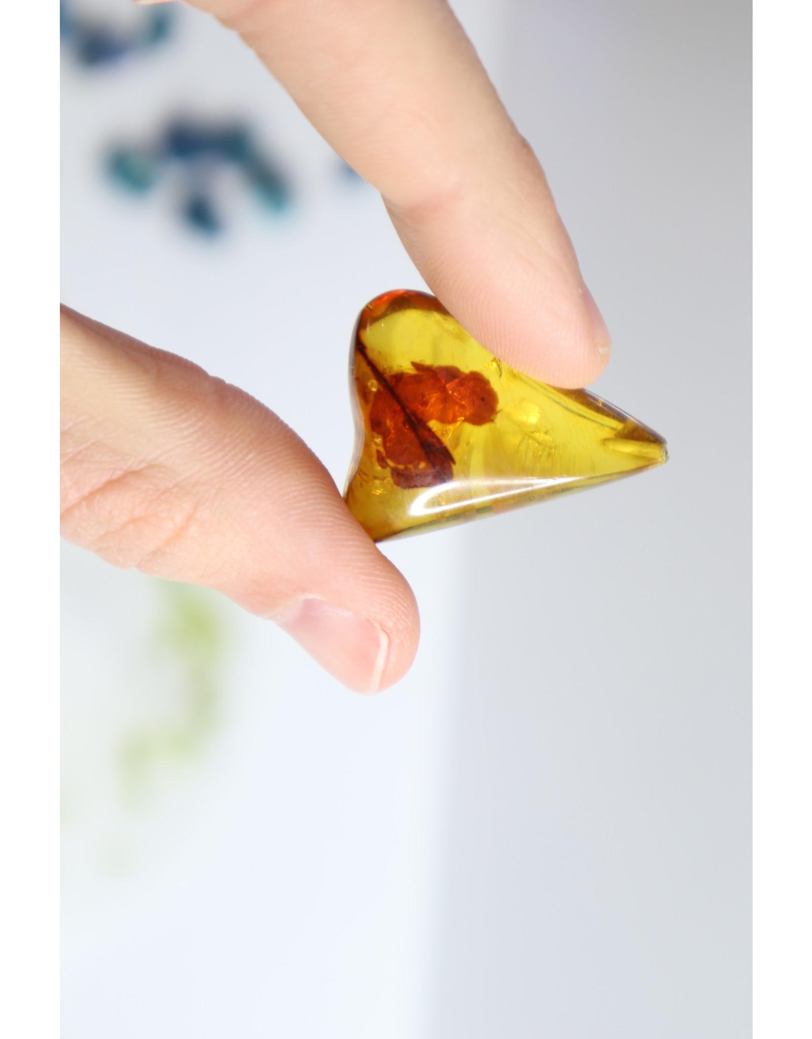 Amber Specimen with Leaf