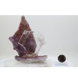 Gypsum on Amethyst #11