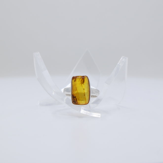 Bug Baltic Amber Ring - Size 6 - Sterling Silver
