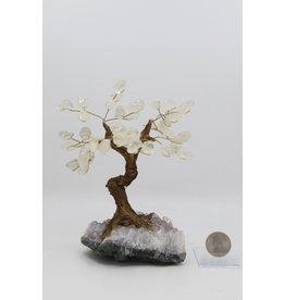 Large Citrine Tree on Amethyst