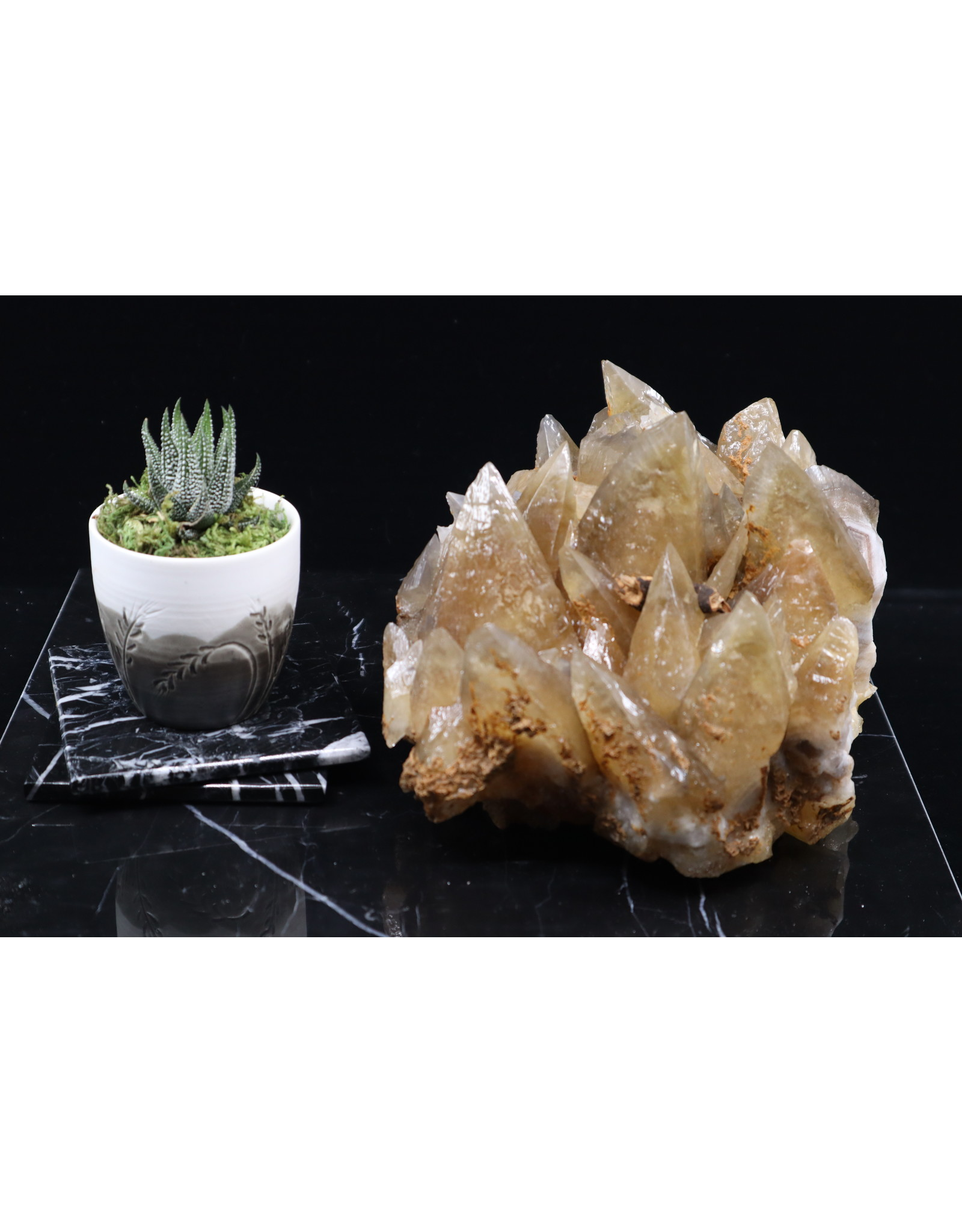 Golden Dogtooth Calcite Large Cluster