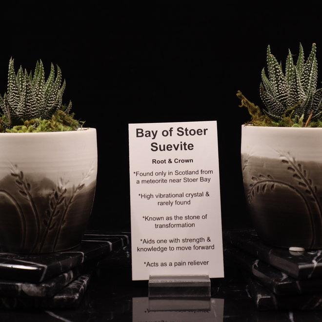 Bay of Stoer Suevite - Tumbled