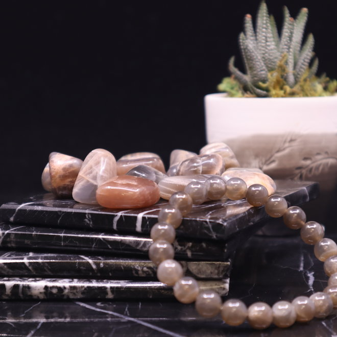 Black Moonstone Bracelet-8mm