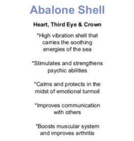 Abalone Shell - Card
