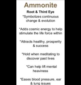 Ammonite - Card