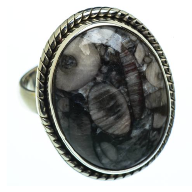 Crinoid Fossil Ring - Size 8 - Sterling Silver Large Oval