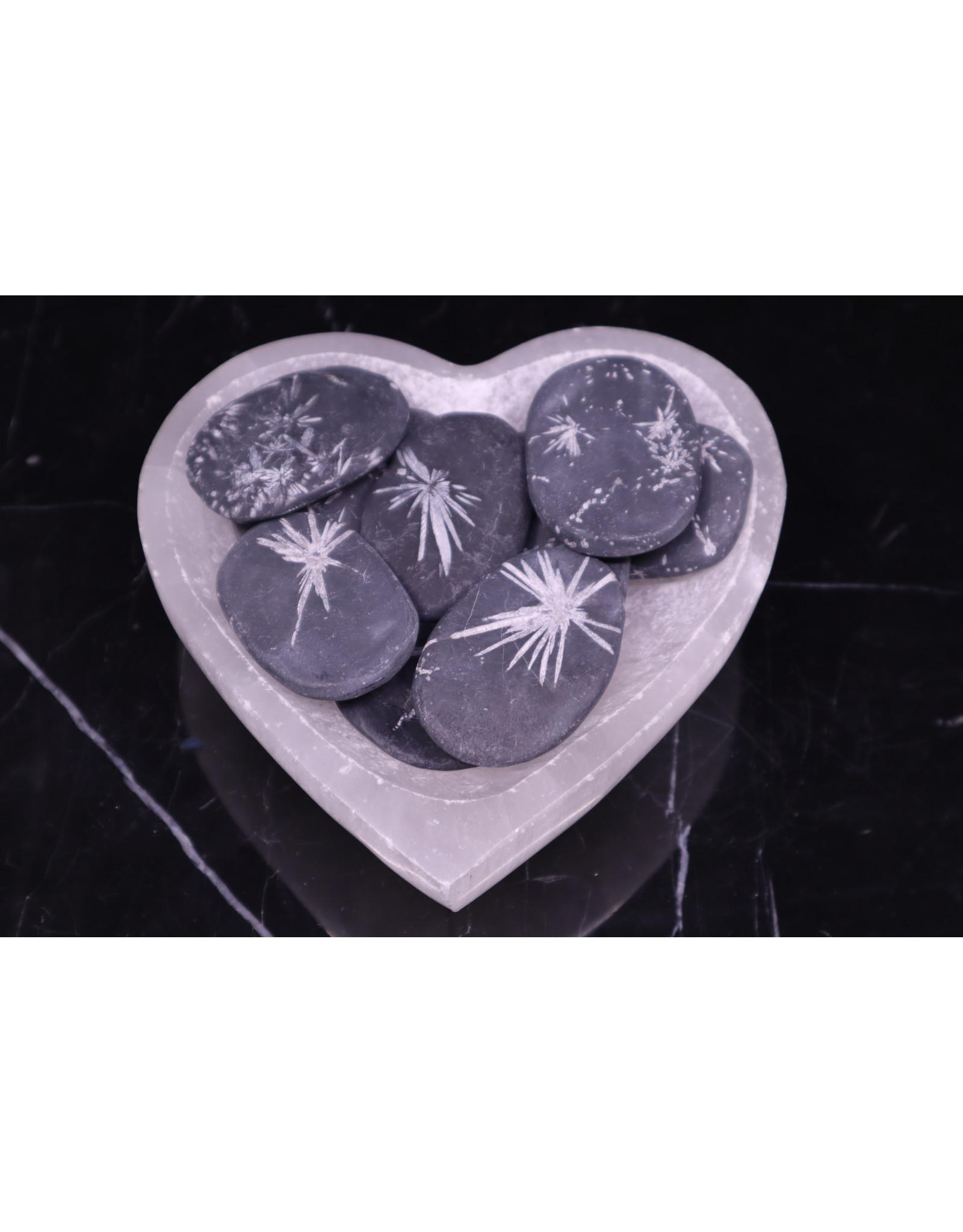 Chrysanthemum Palm/Pillow Stones