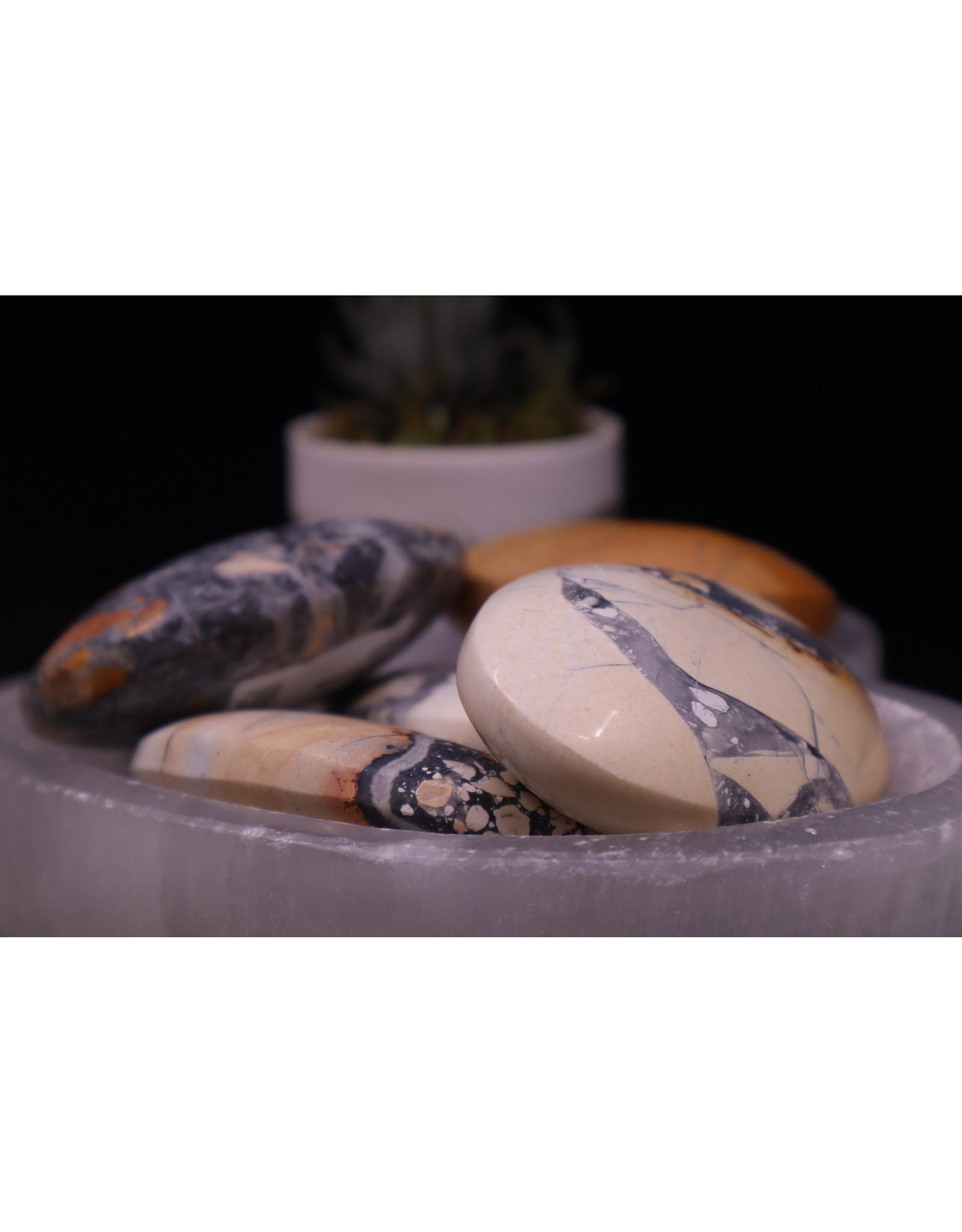 Conglomerate Jasper Palm/Pillow Stone