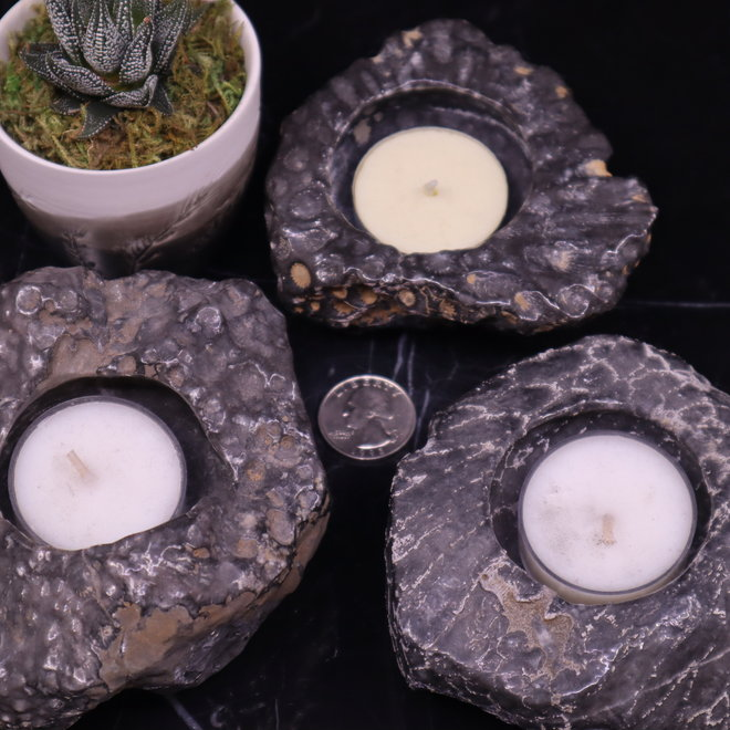 Dark Coral Fossil Candle Holder