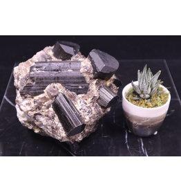 Black Tourmaline Specimen in Smoky Matrix