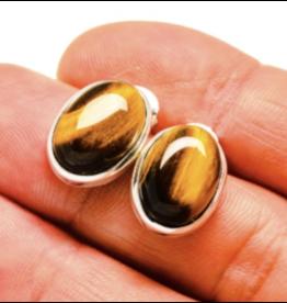 Tiger Eye Earrings - Stud 2
