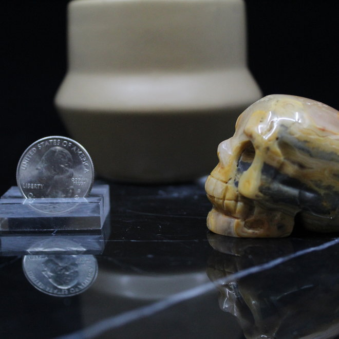 Crazy Lace Agate Skull-Medium