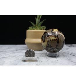 Septarian Sphere/Orb-65mm