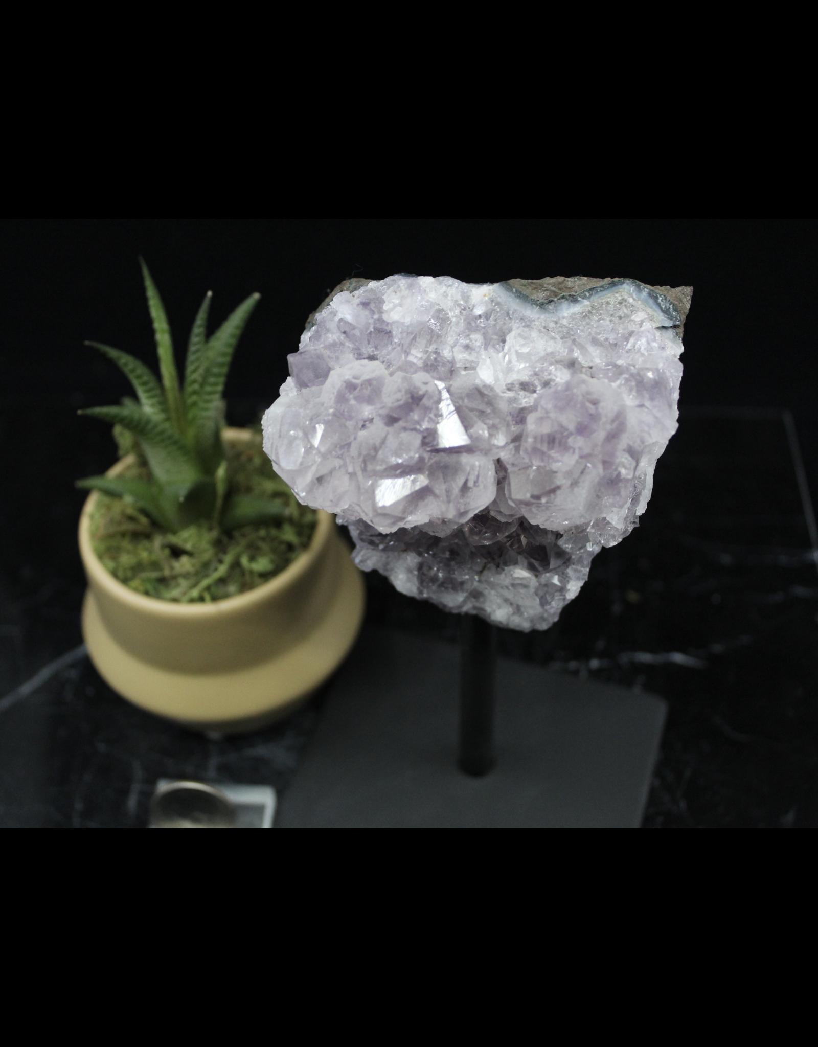 Amethyst on Metal Stand - Medium