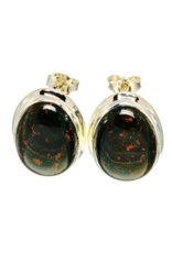 Bloodstone Earrings - Stud