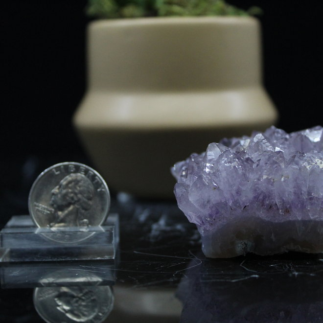Amethyst Cluster - Medium