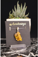 Bug Baltic Amber Pendant