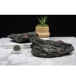 Ruby in Black Kyanite - XL