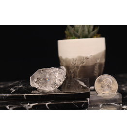 Herkimer Diamond Specimen Natural Cluster with Enhydro #24
