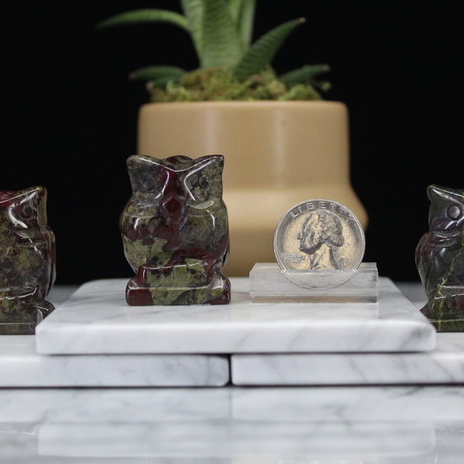 Dragons Blood Owl-Small