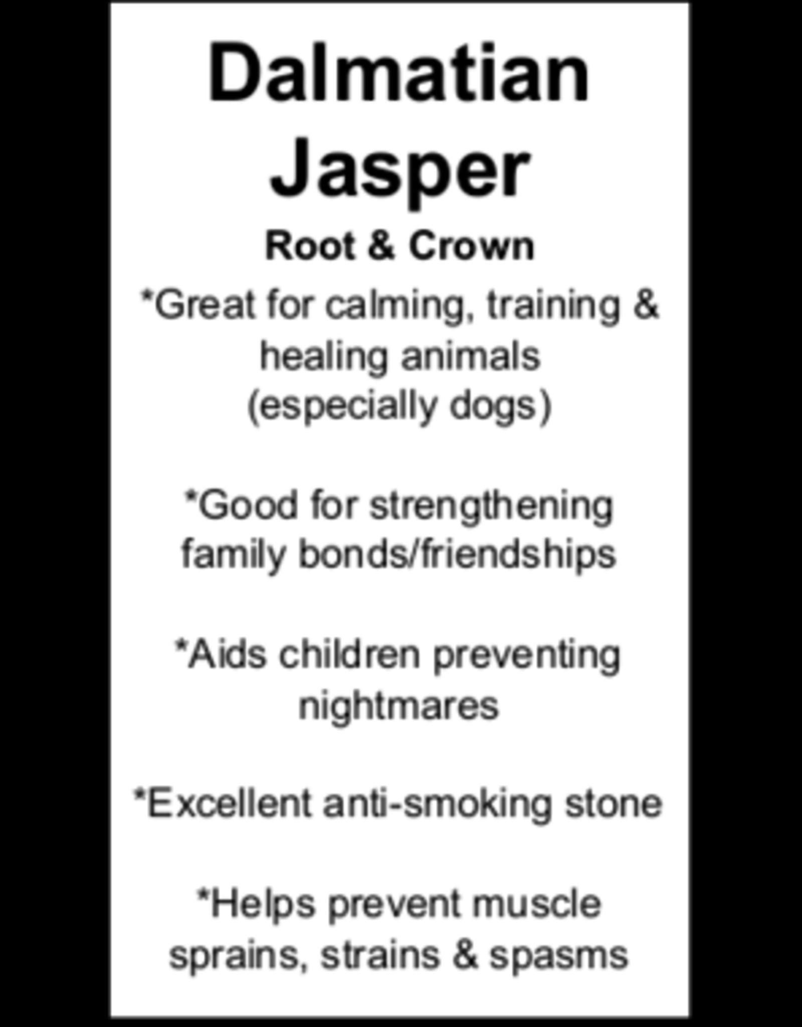 Dalmation Jasper Owl-Small