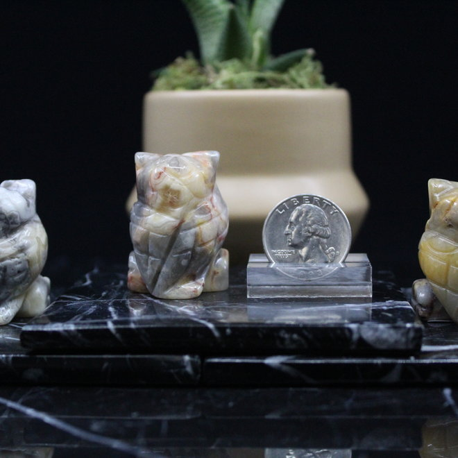 Crazy Lace Agate Owl-Small