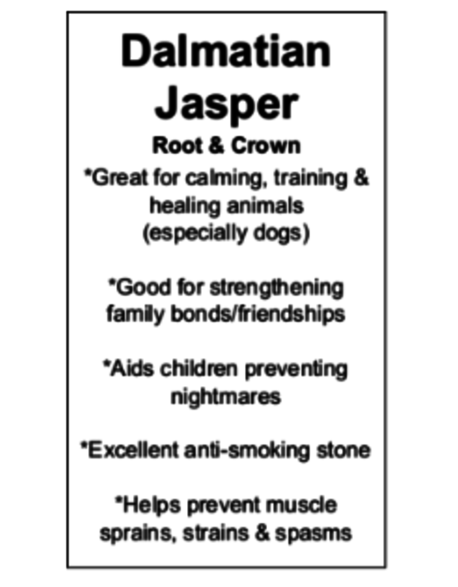 Dalmatian Jasper Worry Stone - Large Oval