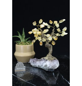 Citrine  Bonsai Tree on Amethyst 5.5 inch
